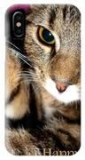 Cat Card IPhone Case