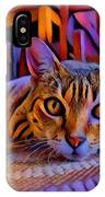 Cat Laying On Braided Rug IPhone Case