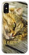 Cat Lie Wood Floor IPhone Case
