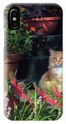 Cat Postcard IPhone Case