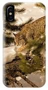 Cat Walk IPhone Case