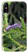 Caterpillar On Branch IPhone Case