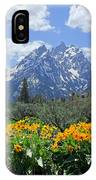 Dm9328-cathedral Group Tetons  IPhone Case
