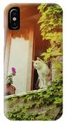 Cats Eye View IPhone Case