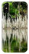 Cattail Reflection IPhone Case