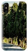 Cedar Curve IPhone Case
