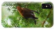 Cedar Waxwing Beauties 1 IPhone Case