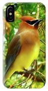 Cedar Waxwing Beauties 11 IPhone Case