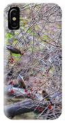 Cedar Waxwings Feeding 2 IPhone Case