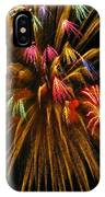 Celebrate IPhone Case