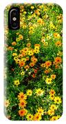 Celebration Of Yellows And Oranges Study 4 IPhone Case