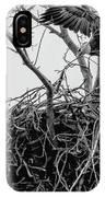 Centerport Eagle 1 IPhone Case