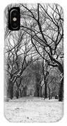 Central Park 1 IPhone X Case