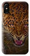 Chance Encounter IPhone Case