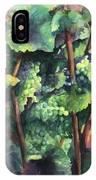 Chardonnay Dans L'ombre IPhone Case