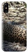 Cheetah Awakened IPhone Case