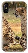 Cheetah Chat 2 IPhone Case