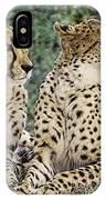 Cheetah Pair IPhone Case