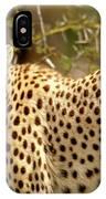 Cheetah Portrait IPhone Case