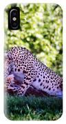 Cheetahs In Love IPhone Case
