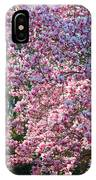 Cherry Blossom - 2 IPhone Case