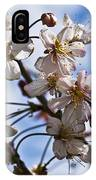 Cherry Blossom Tree IPhone Case