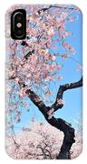 Cherry Blossom Trilogy II IPhone Case