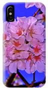 Cherry Blossoms 004 IPhone Case