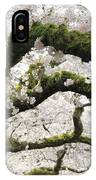Cherry Blossoms 104 IPhone Case