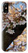 Cherry Blossoms IPhone X Case