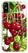Cherry Time IPhone Case