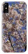Cherry Tree In Bloom IPhone Case