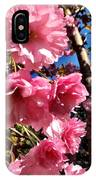 Cherryblossoms Perspective  IPhone Case