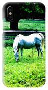 Chestnut Hill Horse IPhone Case