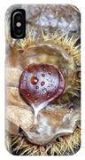 Chestnut IPhone Case