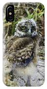 Chick Burrowing Owl  IPhone Case