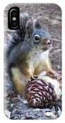 Chickaree Stripping A Pine Cone - John Muir Trail IPhone Case