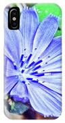 Chicory On Trail To North Beach Park In Ottawa County, Michigan  IPhone Case