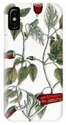Chili Pepper, 1735 IPhone Case
