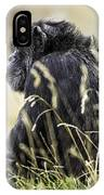 Chimpanzee Sitting In The Grass IPhone Case