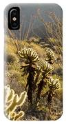 Cholla Cactus And Ocotillo Plants IPhone Case