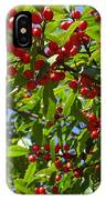 Christmas Berries IPhone Case