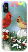 Christmas Birds And Garland IPhone Case