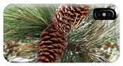 Christmas Pine Cones IPhone Case