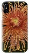 Chrysanthemum 'senkyo Kenshin' IPhone Case