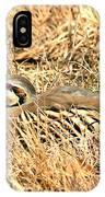 Chuckar Bird Hiding In Grass IPhone Case