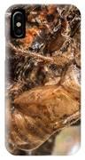 Cicada Exoskeleton Side IPhone Case