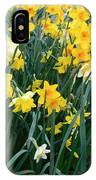 Circle Of Daffodils IPhone Case