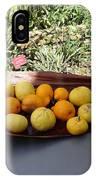 Citrus Fruits IPhone Case
