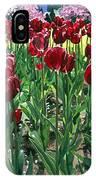 Claret Tulips  IPhone Case